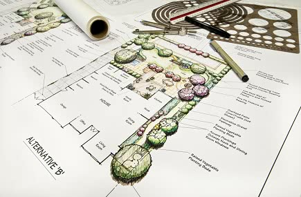 Landscape Design in Buckeye AZ